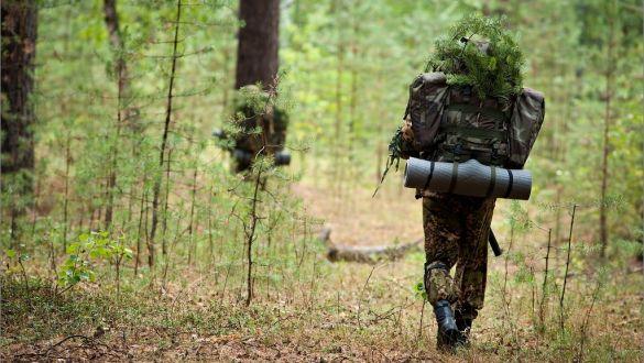 Почему нужно забыть о выживании в лесу.