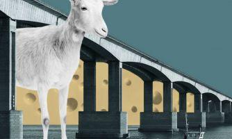 Действие антисанкций. Почему умирают сыроварни в Росси