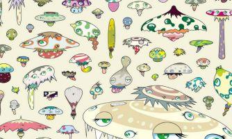Как грибы сделали из нас Homo sapiens