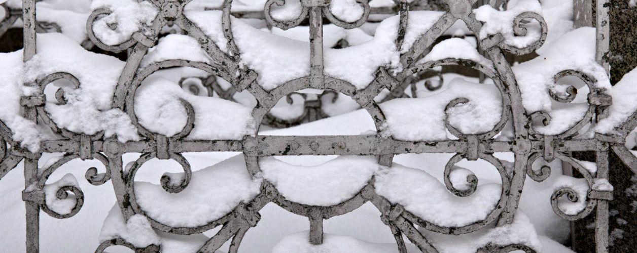 Прогулка по Бугровскому кладбищу