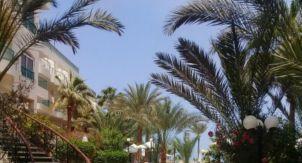 Жизнь в Египте: часть первая, положительная