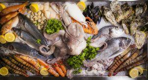 От сардин до иглобрюха. 20 интересных фактов о рыбе