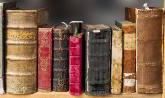 Разносторонние литературные интересы