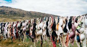 Надо ли стирать лифчики каждый день?
