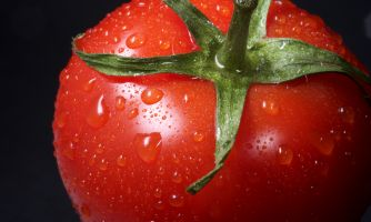 Почему магазинные помидоры такие невкусные