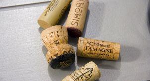 Вино как искусство и российское просвещение
