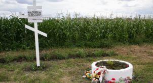 Названы подозреваемые в крушении MH17