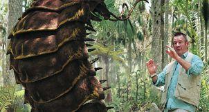 Чем питалась меганевра — древнее гигантское насекомое