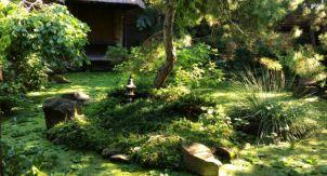 Сад как практика жизни
