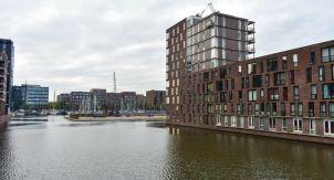 Что голландцы строят на месте моря