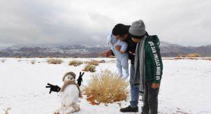 Народная дипломатия. Зачем везти арабам снег?