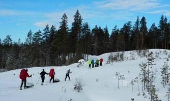 Северный полюс ждёт юных полярников
