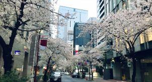 Безлюдный Токио. Самоизоляция выходного дня