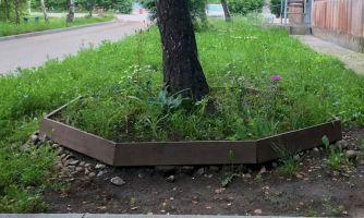 Как преобразить свой двор за  3,5 тыс. рублей