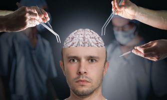 Нейробиология поведения. 8 полезных книг