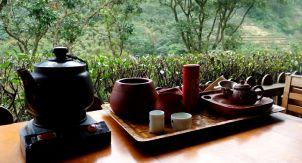 Почему в мире всего два слова «чай»?