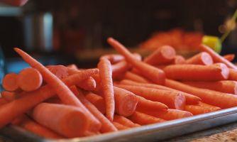 Научим делать водку даже из морковки
