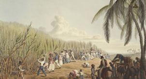 Мнение экономиста об устройстве современного рабства