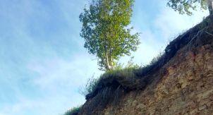 Ильменский глинт — одно из чудес Новгородии