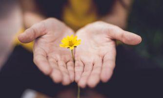Непростой этический вопрос: про ценность жизни