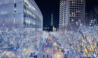 Новогодние огни Токио
