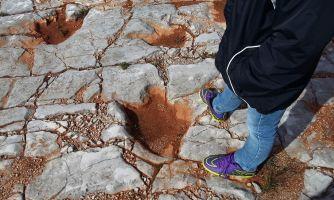 Как в каменной породе остались следы динозавров