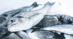 В какой рыбе больше йода