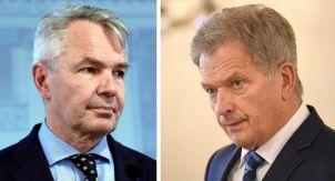 Что говорят финские политики о российских митингах