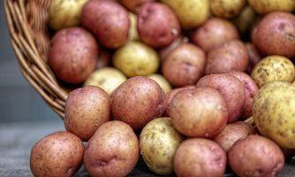 Хотите дешёвую картошку? Пожалуйста, нищеброды!