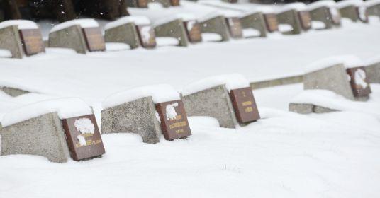 Кладбища доживают свой век?