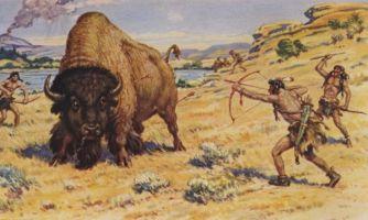 Сколько нужно индейцев, чтобы убить крупных животных