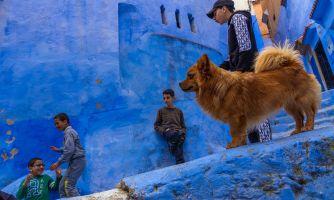 «Голубая жемчужина». Что там еще в Марокко?