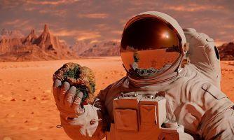 О перспективах колонизации Марса