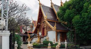 Лотосы интереснее золотого Будды