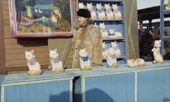 Кошки, которые обошли многих актёров