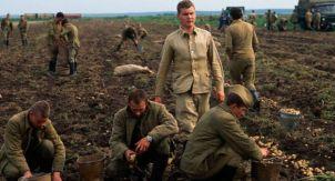 Советская армия в «битвах за урожай»