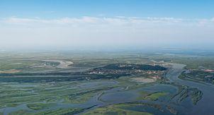 Зелёное море тайги. Любуемся Ханты-Мансийском