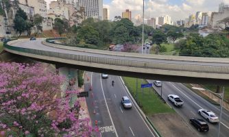 Сан-Паулу глазами путешественника