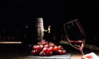 Искусственный интеллект будет оценивать виноград