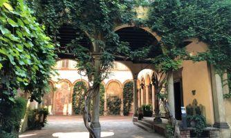 Причудливая история виноградника в центре Милана