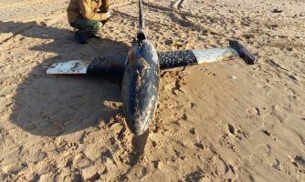 На пляж Анапы выбросился беспилотник НАТО