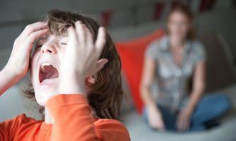 Воспитание детей: теоретики vs. практики
