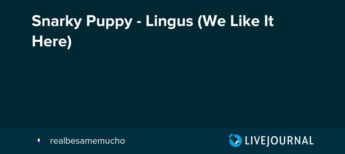 Snarky Puppy Lingus We Like It Here Realbesamemucho