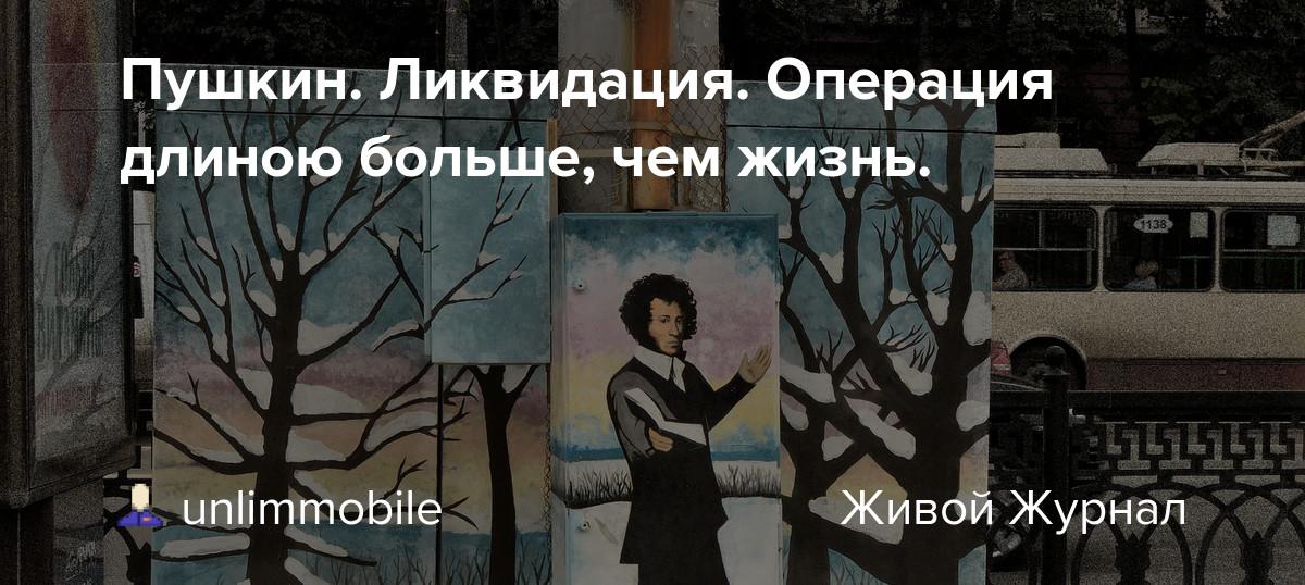 Пушкин. Ликвидация. Операция длиною больше, чем жизнь.