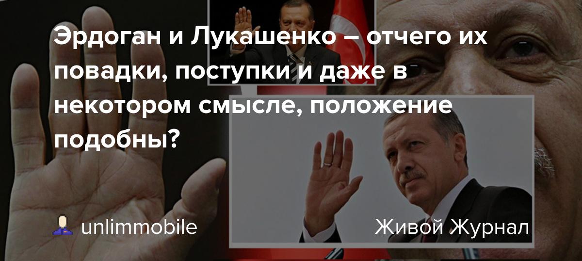 Эрдоган и Лукашенко – отчего их повадки, поступки и даже в некотором смысле, положение подобны?