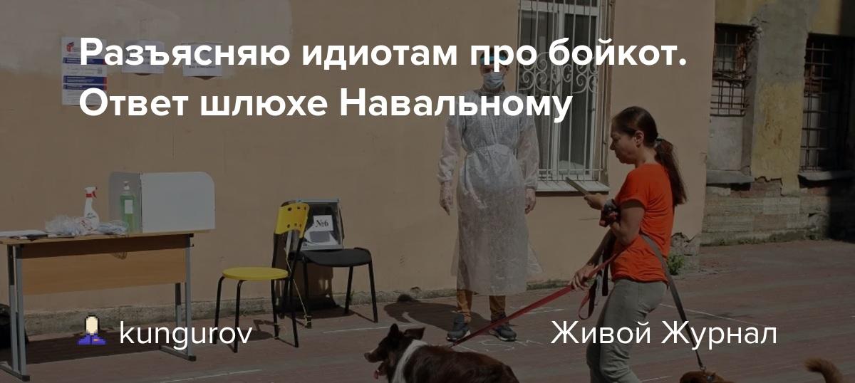 Разъясняю идиотам про бойкот. Ответ шлюхе Навальному