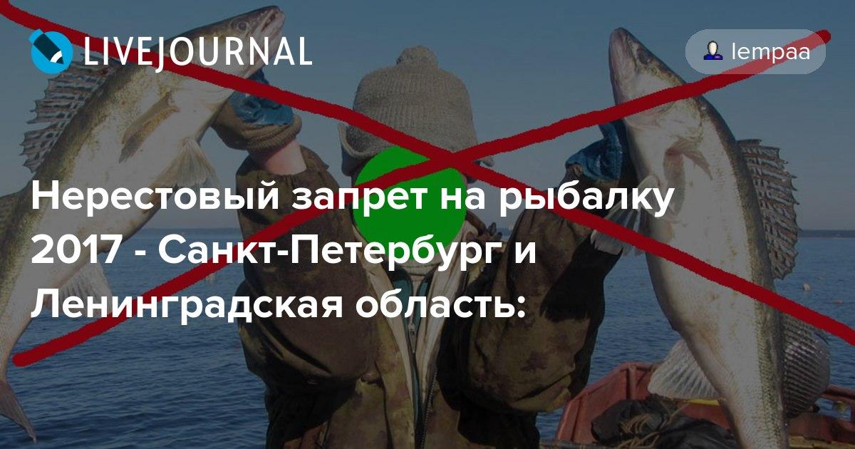 законы за незаконную рыбалку