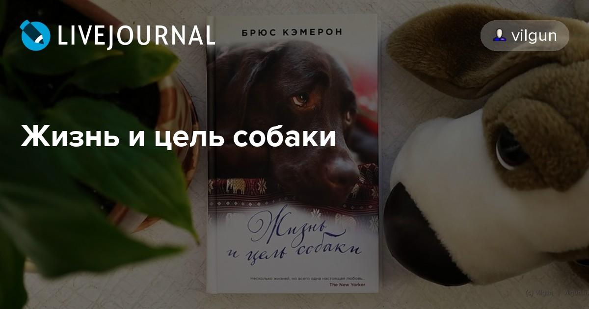Сказки пушкина в стихах для детей читать
