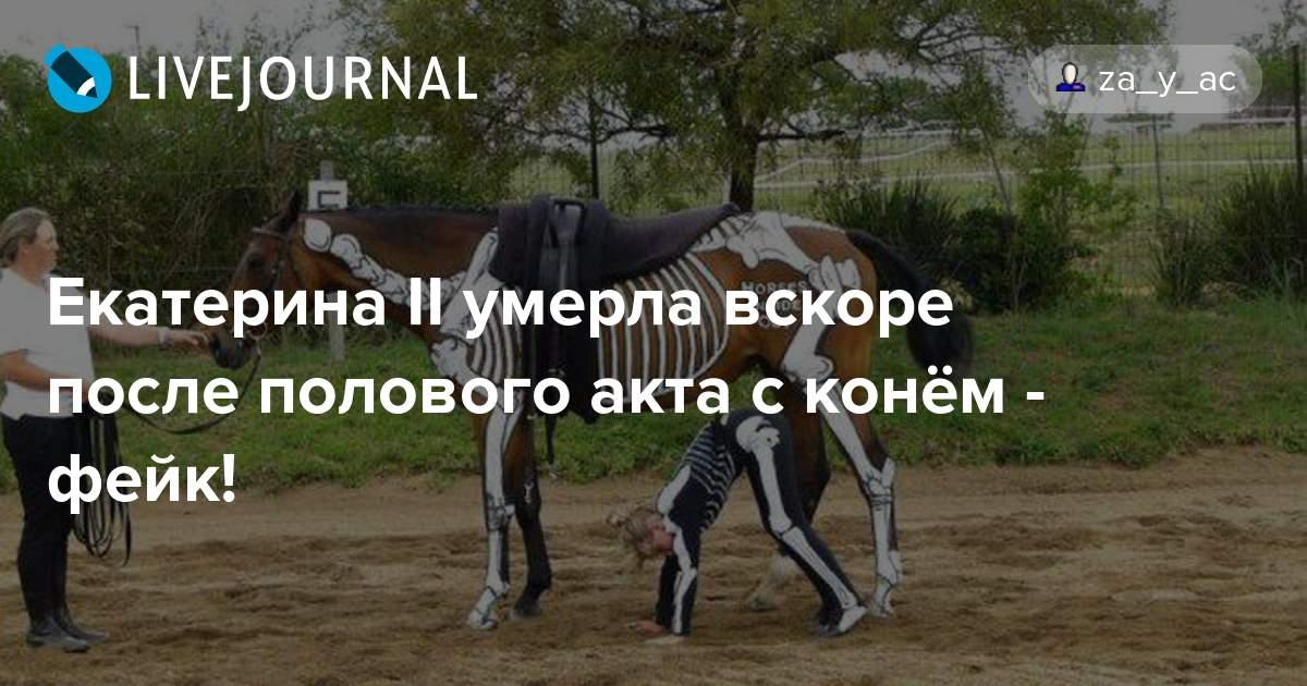 порно ебля с конем фото
