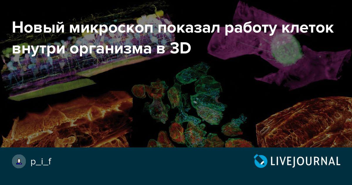 Новый микроскоп показал работу клеток внутри организма в 3D ... 371fd4bd67ad4